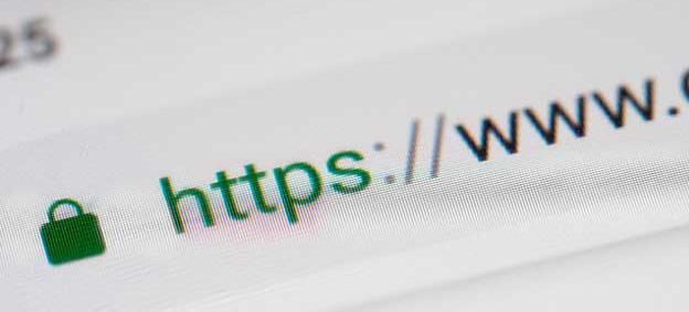 Find your website